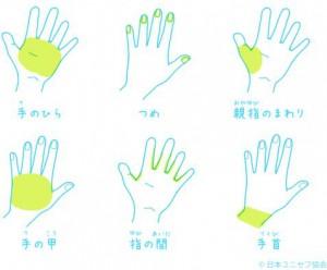 手洗い箇所